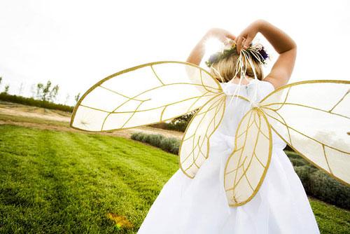 Fairywings_anna_kuperberg